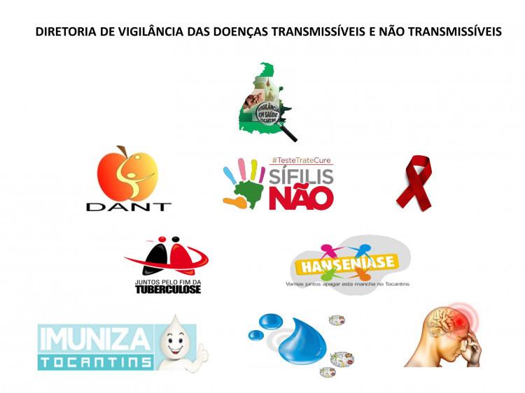 Diretoria de Vigilância das Doenças Transmissíveis e Não Transmissíveis