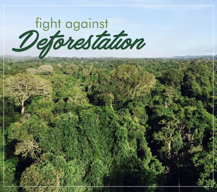 Fight against deforastation