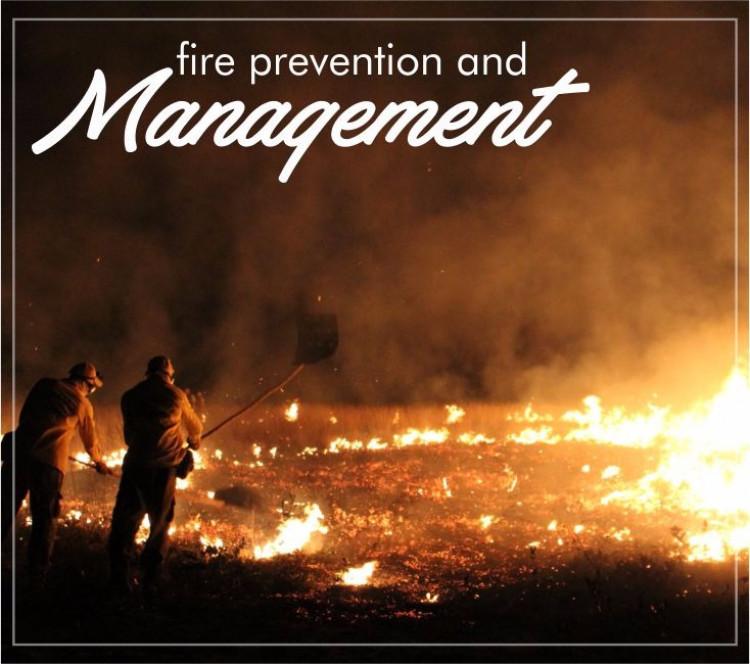 Prevenção e Manejo do Fogo