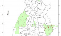 Áreas que mais queimaram nos meses de junho e julho