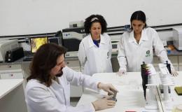 02. O estudo prevê que quatro variações da PCR podem ser aplicadas no diagnóstico da Covid-19.......jpeg