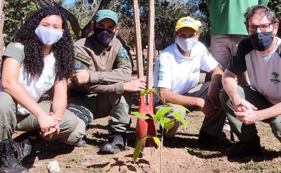 Naturatins inicia a Semana do Meio Ambiente com visita técnica à Pedra da Baliza