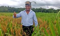 Agrotins 2021 100% Digital: Agricultura Familiar avança com adoção de tecnologias produtivas