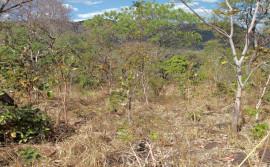 Meio Ambiente divulga panorama do Monitor de Secas referente a maio de 2021