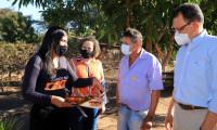 Projeto Foco no Fogo leva orientações sobre queimadas aos municípios de Novo Acordo, Gurupi e Peixe