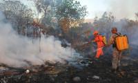 Conselho de Meio Ambiente aprova Plano de Prevenção e Combate aos Desmatamentos e Incêndios Florestais do Tocantins