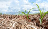 A evolução e as ações práticas sustentáveis do plano ABC continua na página da Agrotins até 30 de julho