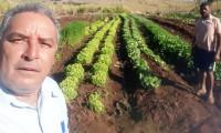 Com assistência técnica do Ruraltins produtor amplia investimentos em propriedade na zona rural de Paraíso