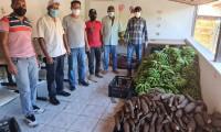 Governo do Tocantins inicia Programa de Aquisição de Alimentos em Arraias na região sudeste