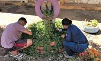 Cidadania e Justiça insere jardinagem como atividade pedagógica para adolescentes em cumprimento de medida socioeducativa do Case
