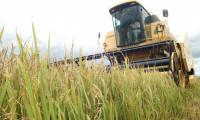Produtores e investidores agropecuários bem informados