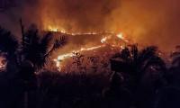 Com atuação de bombeiros militares e brigadistas, incêndio florestal é controlado na Serra das Traíras