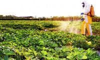 Adapec prorroga prazo para aplicadores de defensivos agrícolas apresentarem certificado do curso de uso correto e seguro de agrotóxicos