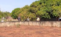 Meio Ambiente inspeciona local onde será instalado viveiro de mudas frutíferas e nativas do Cerrado