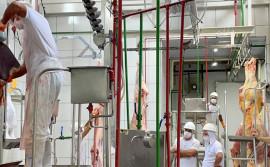 Com apoio do Governo do Tocantins, duas indústrias de produtos de origem animal retomam as atividades no Estado