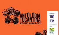 Antologia Tocantina 2021 tem vencedores definidos e 55 poemas para publicação em livro