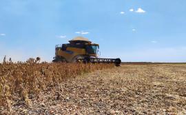 Prazo para colheita de soja nas planícies tropicais encerra neste sábado, 25