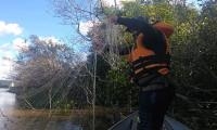 Naturatins fixa período de defeso e novas regras para a Piracema 2021/2022 no Tocantins
