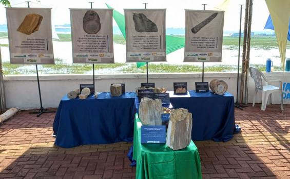Exposição de fósseis vegetais do Monumento Natural de Árvores Fossilizadas do Tocantins marca programação do 73° aniversário de Filadélfia
