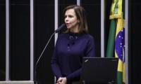 Deputada Federal Professora Dorinha representará a FPME na   1ª Reunião Ordinária  FEE-TO - 2021